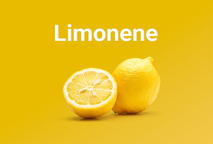 A lemon sliced in half.
